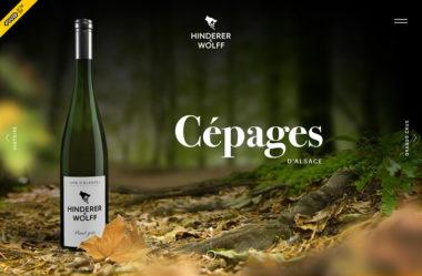 Cépages d'AlsaceのWebデザイン
